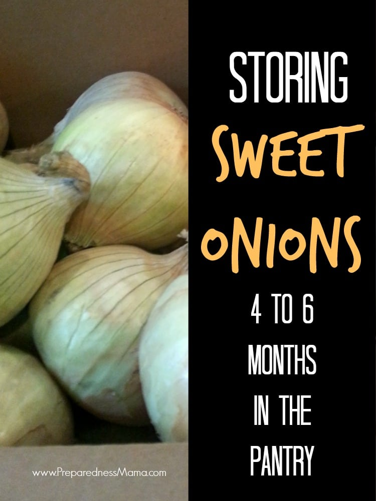 Sweet onion storage methods. They'll last up to 6 months with this trick | PreparednessMama