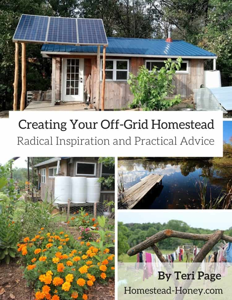 Creating An Off Grid Homestead Preparednessmama