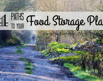 4 Paths to Your Food Storage Plan | PreparednessMama