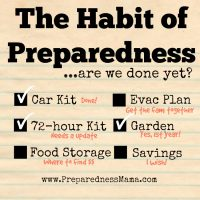 Getting into the groove with the habit of preparedness | PreparednessMama