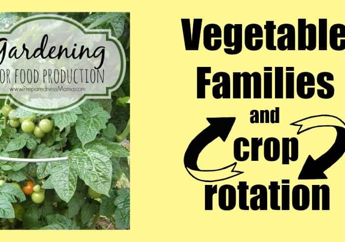 Vegetable Families and Crop Rotation