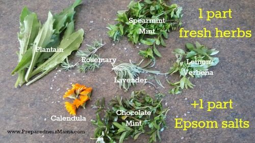 Many herbs are suitable for herbal bath salts. I've used mint, calendula and plantain as my base. They are all good for skin repair | PreparednessMama