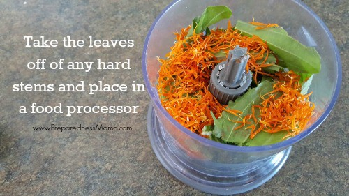 Add the fresh herbs and Epsom salts to a food processor | PreparednessMama