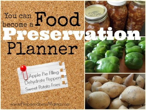Do you know what will happen with every piece of produce from your harvest?You need a food preservation planner | PreparednessMama