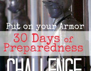 30 Days of Preparedness Challenge