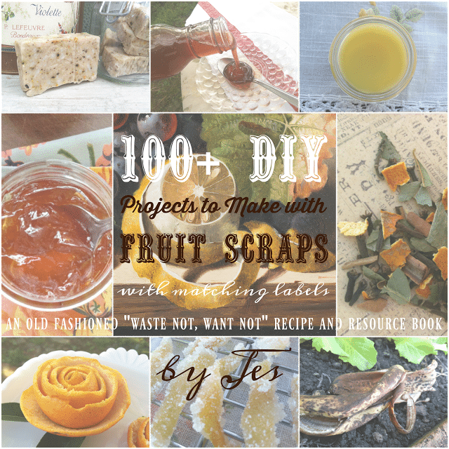 100 projects to make with food scraps preparednessmama forumfinder Gallery