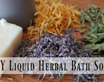 DIY Liquid Herbal Bath Soap
