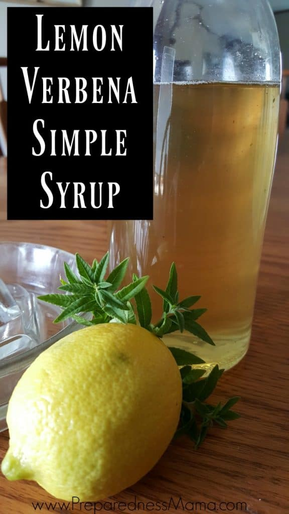 Preserve the harvest with lemon verbena simple syrup | PreparednessMama