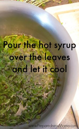 Pour the hot syrup over the leaves and let it cool | PreparednessMama