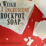 No Weigh 3 Ingredient Crockpot Soap