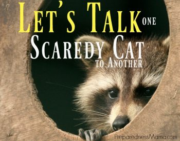 Let's talk - one scaredy cat to another. Taking the scared out of being prepared. How to do you manage? | PreparednessMama