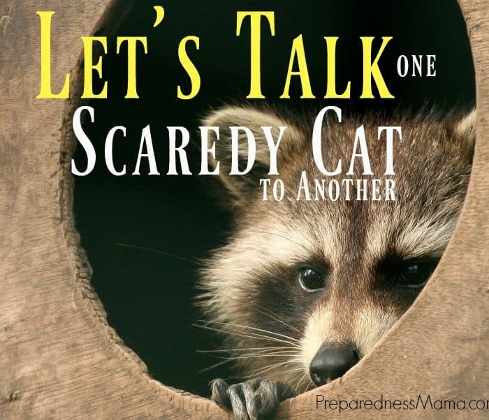 Let's Talk, One Scaredy Cat to Another