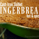 Cast Iron Skillet Gingerbread