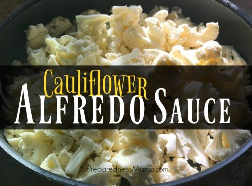For a healthy alternative to sauce in a jar, MYO Cauliflower alfredo sauce | PreparednessMama