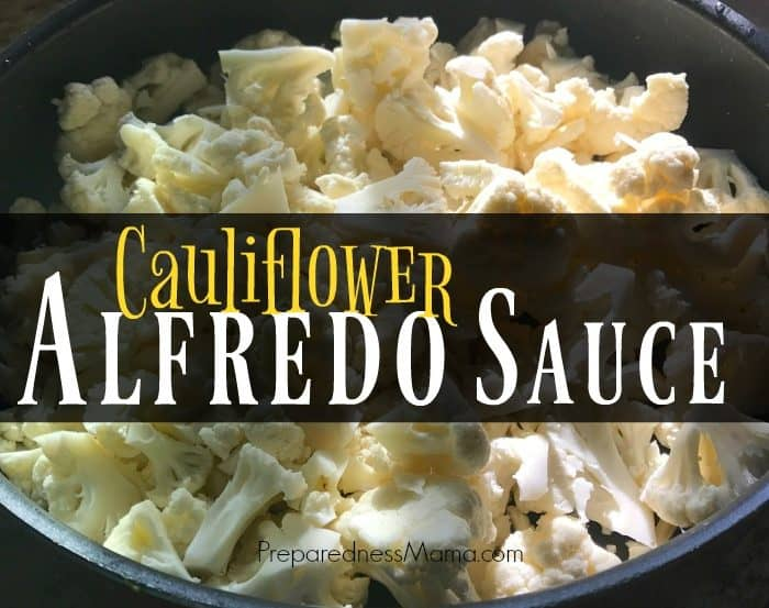 MYO Cauliflower Alfredo Sauce