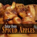 Solar Oven Spiced Apples