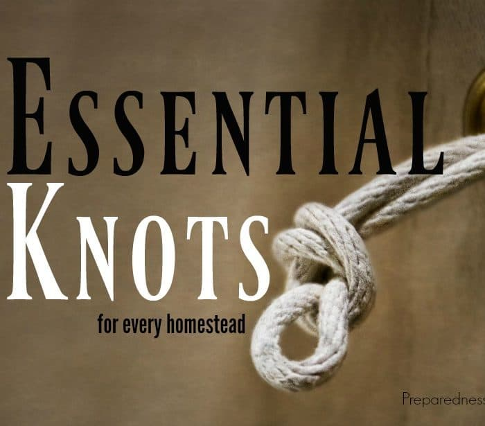 5 Essential Knots to Learn Today