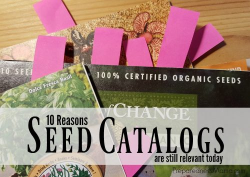 10 Reasons Seed Catalogs Are Still Relevant In The Age Of Online Shopping |  PreparednessMama