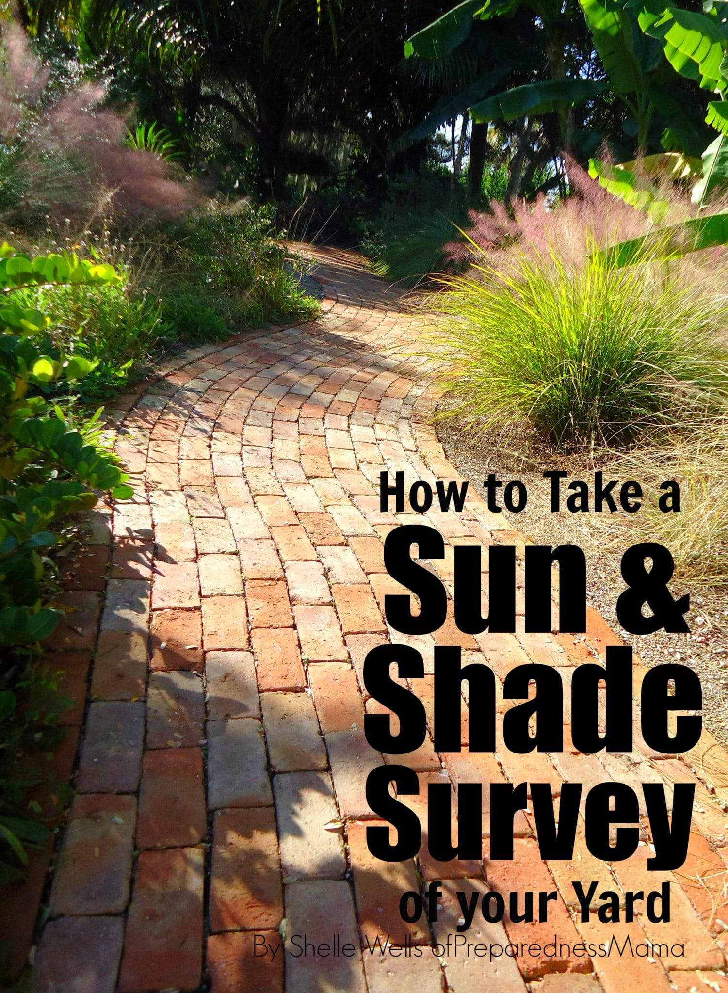How to Take a Sun & Shade Survey of Your Yard