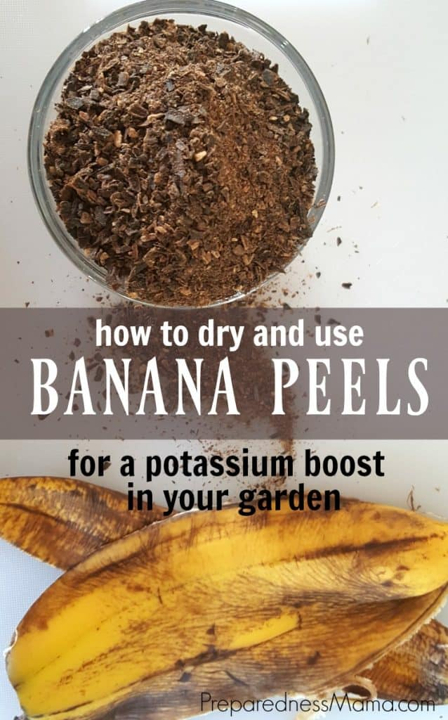 How to dry banana peels and give a potassium boost to your garden | PreparednessMama