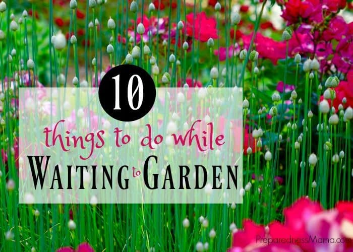 10 Things to do While Waiting to Garden