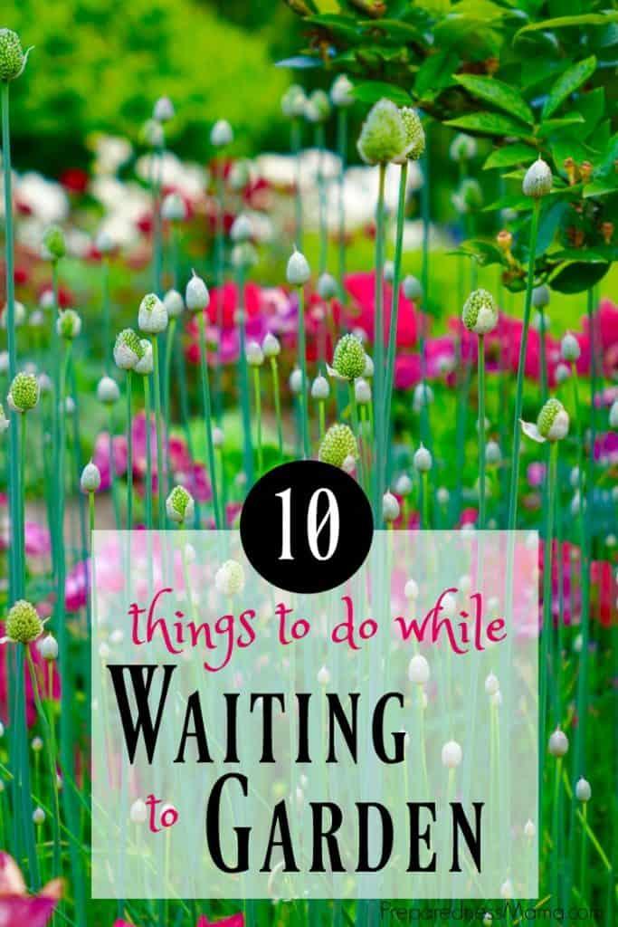 10 things to do while waiting to garden | PreparednessMama