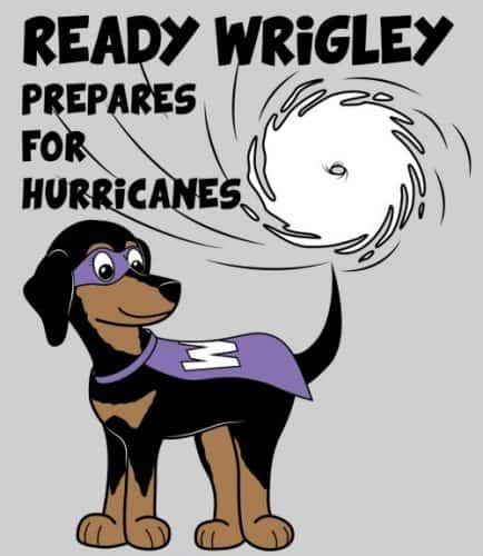 Ready Wrigley Preparedness Coloring Book | PreparednessMama
