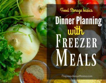 Dinner Planning with Freezer Meals + Tips