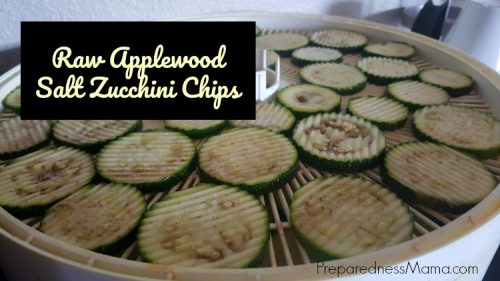 Zucchini Chips coated with applewood salt and apple cider vinegar | PreparednessMama