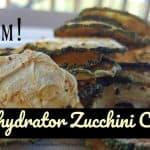 No Fat Dehydrator Zucchini Chips