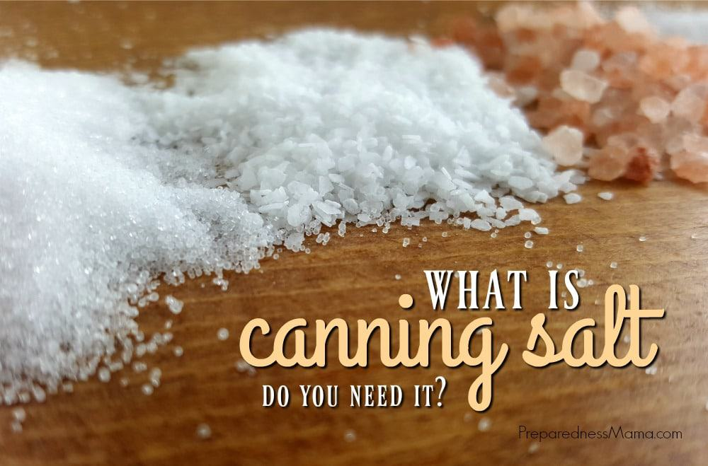 What Is Canning Salt And Do You Need It Preparednessmama