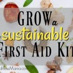 Grow a Sustainable First Aid Kit