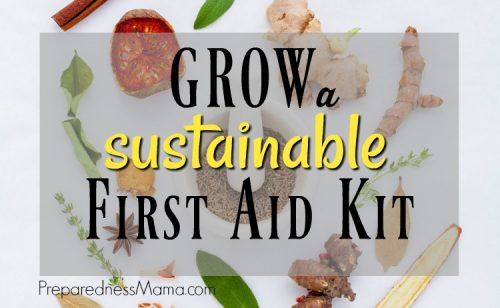 You can stay prepared when there is a sustainable first aid kit in your back yard. Learn the five herbs to get started and begin to build your kit | PreparednessMama