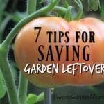 7 Tips for Saving Garden Leftovers
