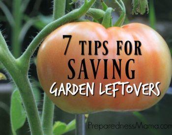7 Tips for Saving Garden Leftovers