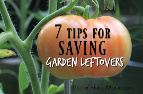 Your summer garden is winding down, what can you do with the last bit of the harvest? Saving garden leftovers is a cost saving idea every grower should embrace | PreparednessMama