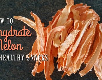 How to Dehydrate Melon Slices for Healthy Snacks
