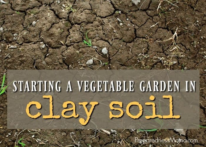 Starting a Vegetable Garden In Clay Soil