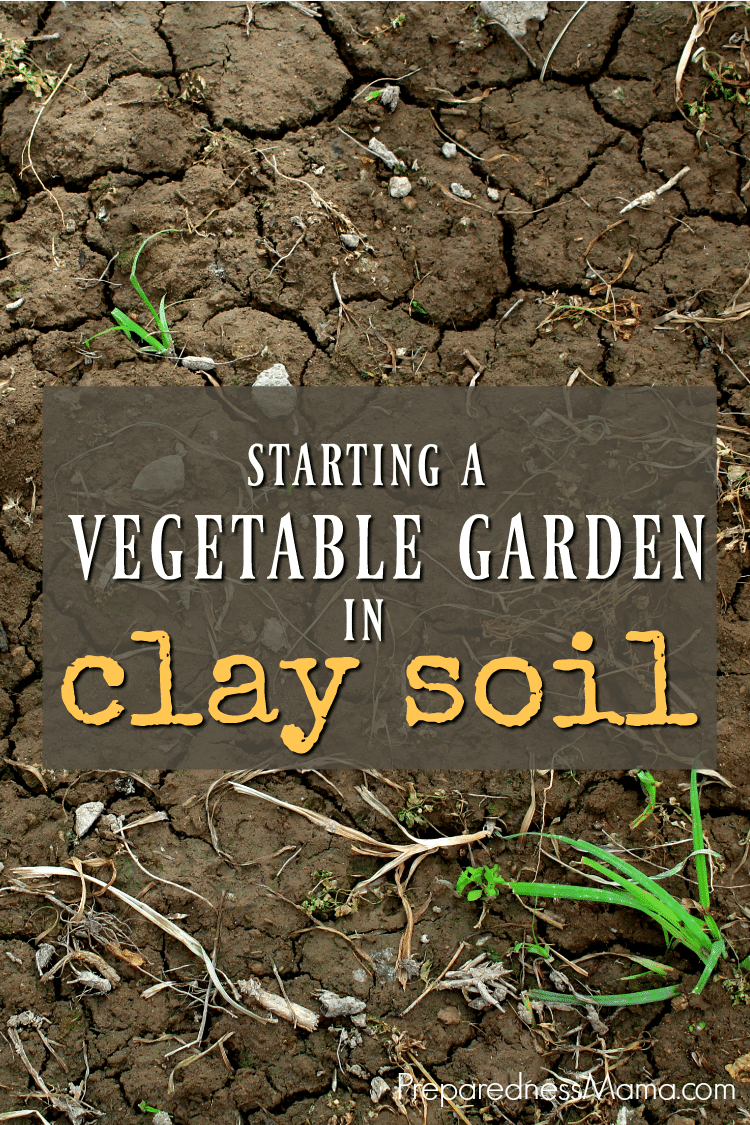 starting a vegetable garden in clay soil preparednessmama - How To Start A Vegetable Garden From Scratch