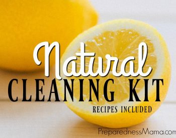 Make a DIY Natural Cleaning Kit