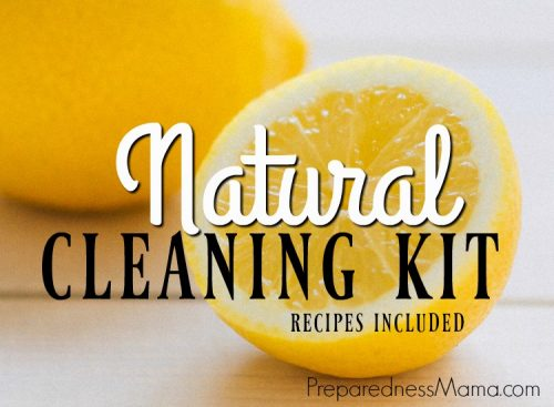 DIY Natural Cleaning kit using 10 ingredients, recipes included | PreparednessMama