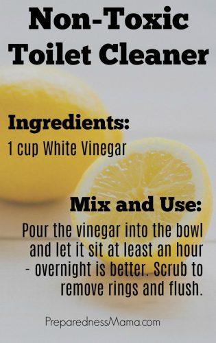 10 Ingredient DIY Cleaning Kit: Non-toxic toilet bowl cleaner   PreparednessMama