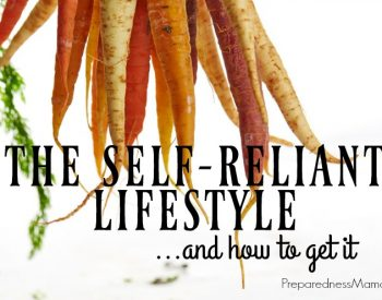The Self-Reliant Lifestyle (and how to get it)