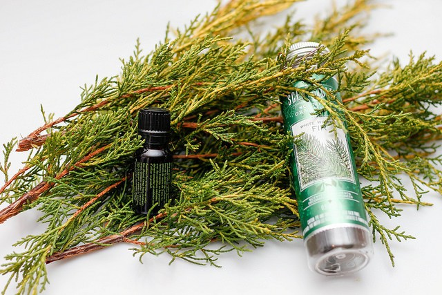 atop the small pine branches are two small bottles with oil made from pine sap