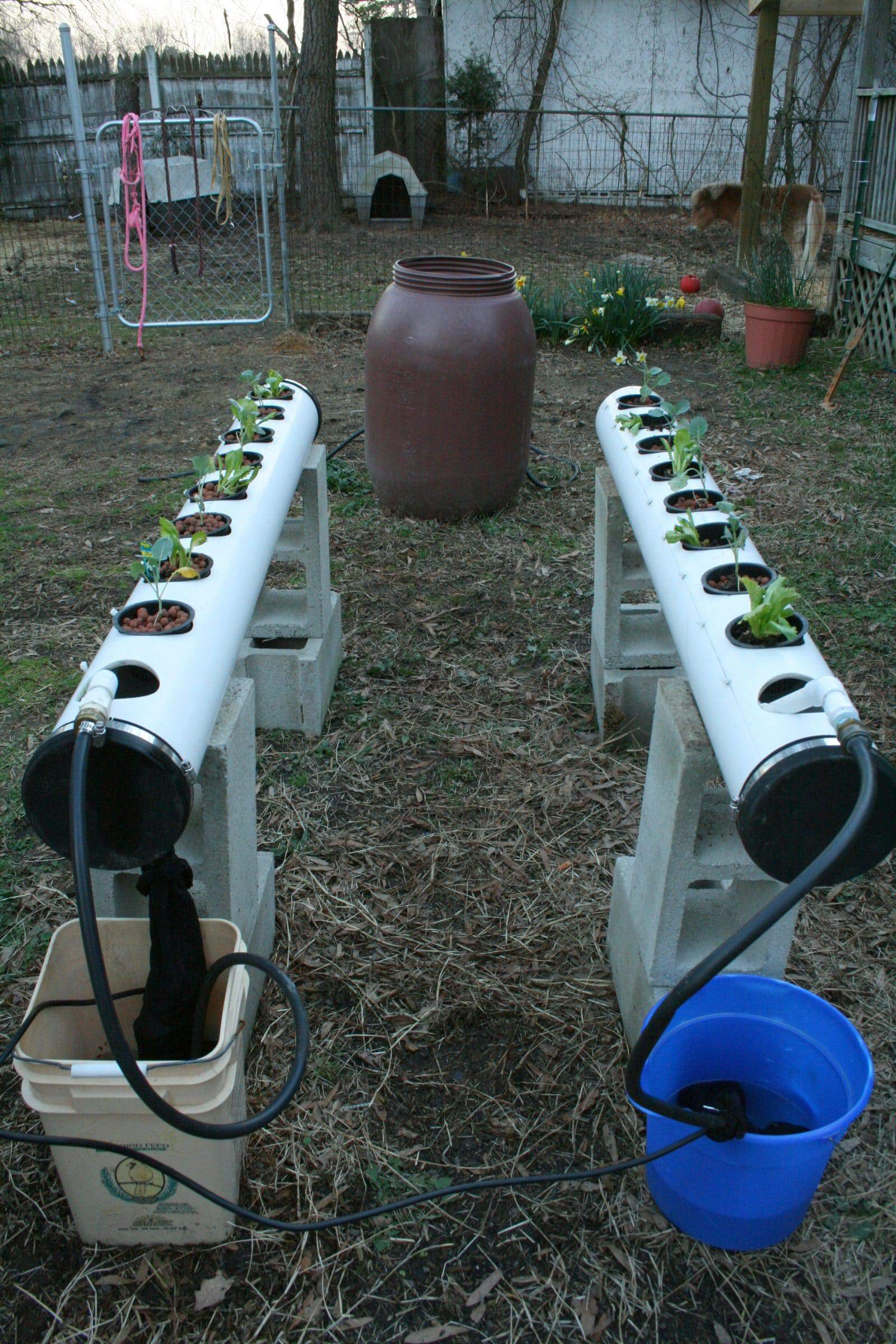 two sets of nutrient film technique systems growing green plants