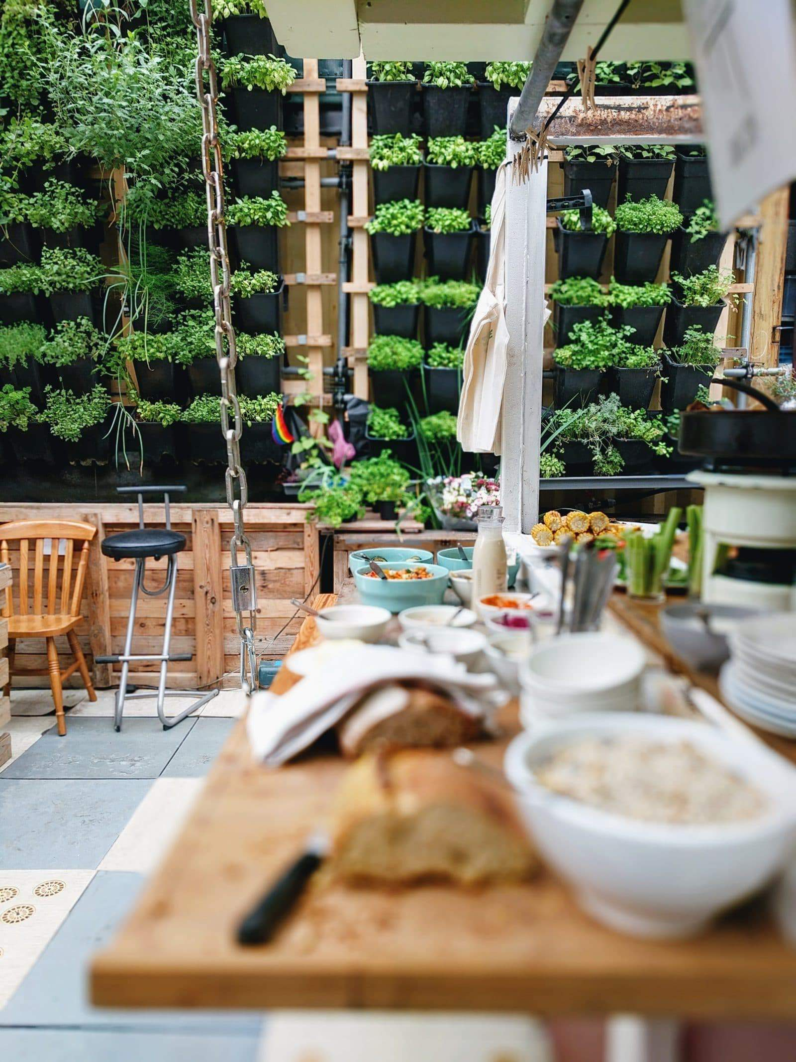 a restaurant using vertical hydroponic gardening system