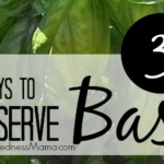 How to Preserve Basil With 3 Simple Tips