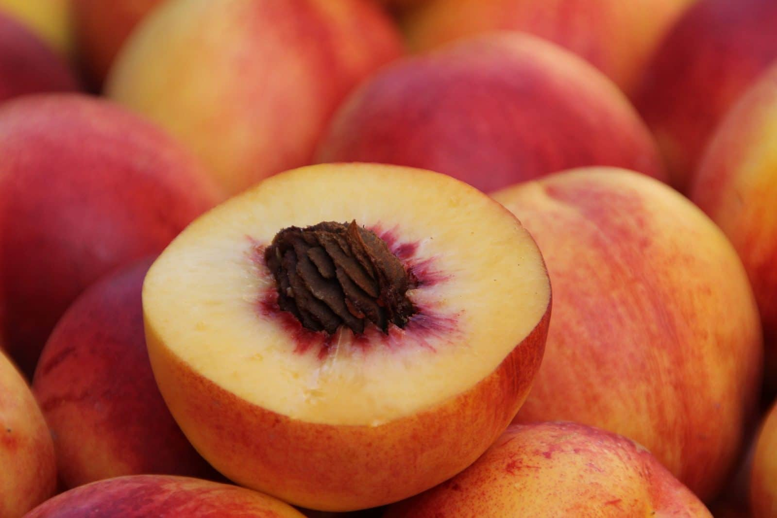 Raw peaches for canning peaches