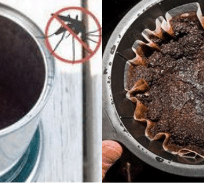 10 Genius Ways To Recycle Your Used Coffee Grounds