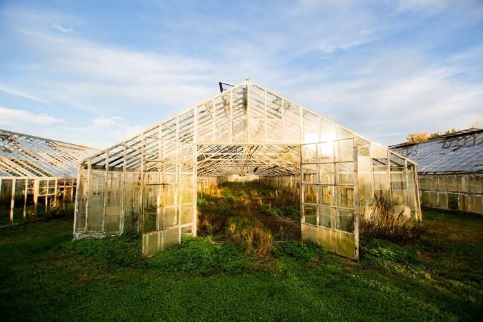 a greenhouse - best greenhouse kit